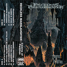 RECKLESS MANSLAUGHTER-Caverns Of Perdition